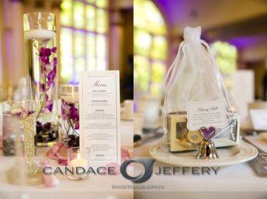 Candace Jeffery Photography